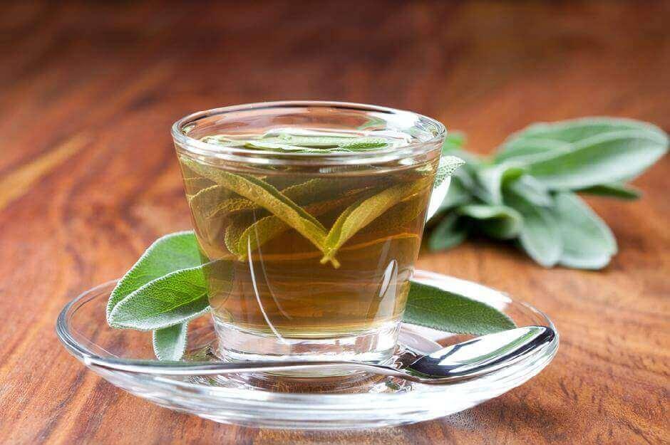 шавлія для лікування хворого горла