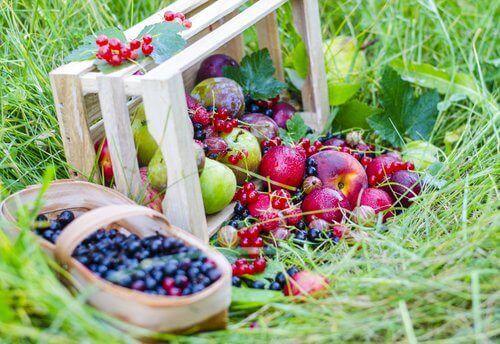 збагачені колагеном ягоди