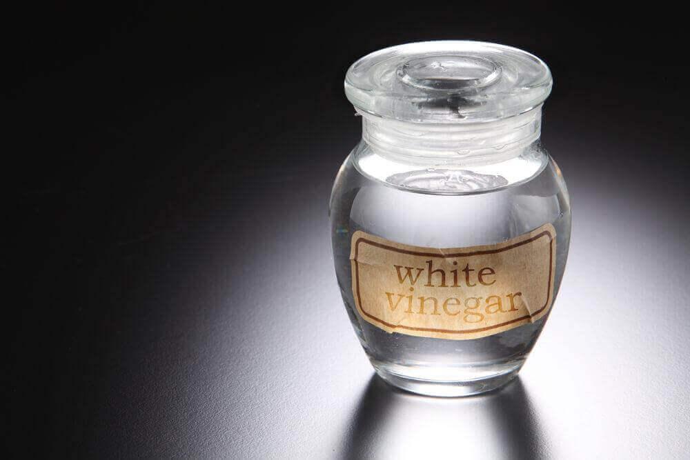 білий оцет для лікування грибка шкіри голови