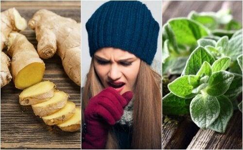5 рослин, які допоможуть позбутися мокротиння