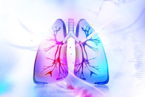 Потрібна детоксикація легень? Спробуйте ці натуральні засоби