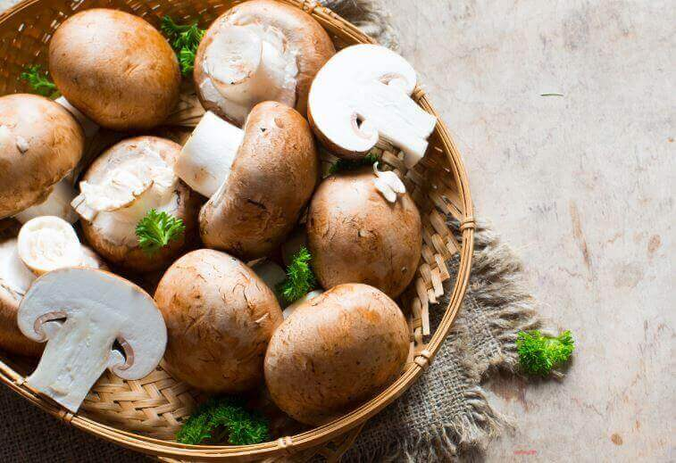Як приготувати гриби, начинені вершковим соусом
