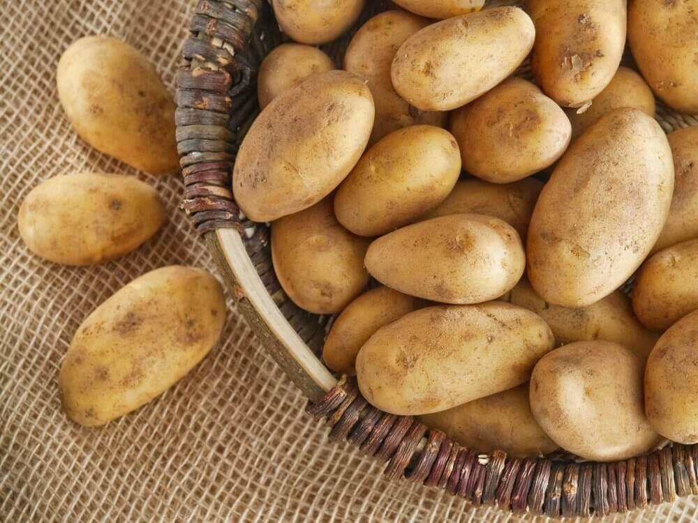 домашня картопля, фарширована чорізо та сиром