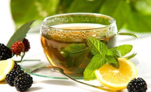 причини вживати зелений чай з імбиром