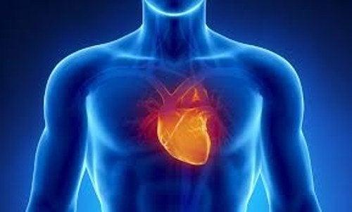 порушення у роботі серцево-судинної системи