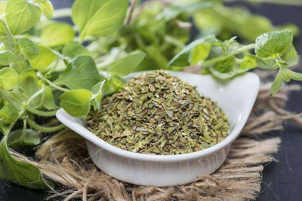 трави для лікування бородавок