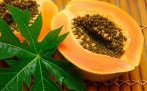 папая для збільшення рівня тромбоцитів