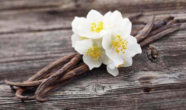 як позбутися вологого запаху за допомогою ванілі