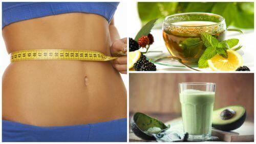 Як вживати зелений чай для втрати ваги