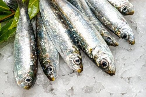 риба для спалення жиру