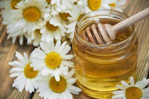 ромашка та мед, щоб позбутися мігрені