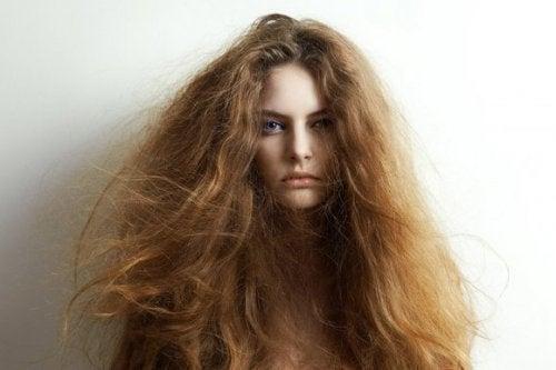 5 натуральних інгредієнтів для лікування сухого волосся