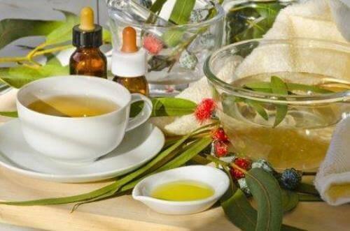 чай з евкаліпта