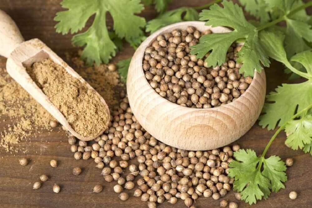 коріандрове насіння для втрати ваги