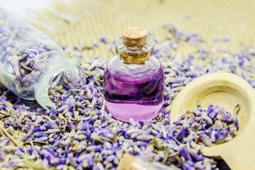 натуральні аромати для оселі з лавандою