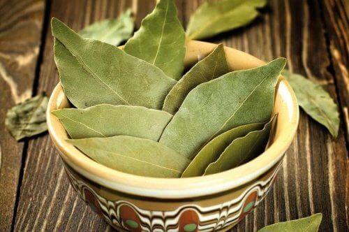 аромати для оселі з лавровим листям