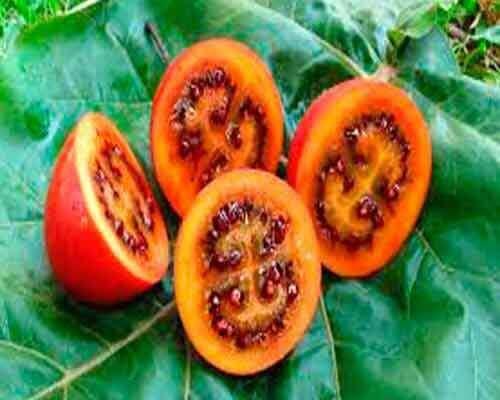 4 екзотичні фрукти та овочі, про які ви ніколи не чули