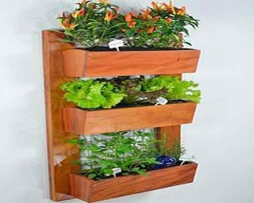 Як створити висячий сад у себе вдома