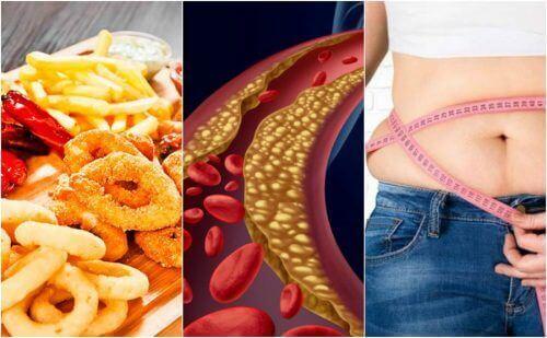 Можливі причини високого рівня холестерину