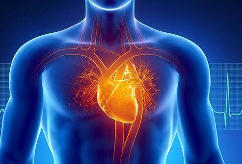 Як надмірна робота впливає на здоров'я серця