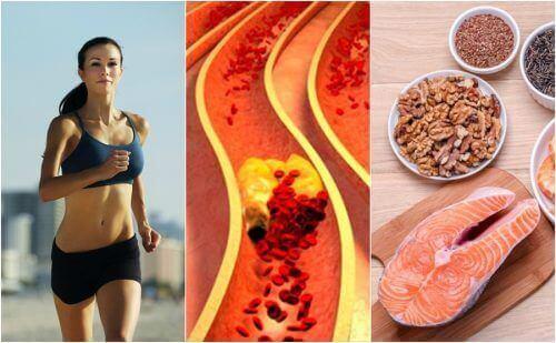 Корисні звички, щоб контролювати рівень холестерину