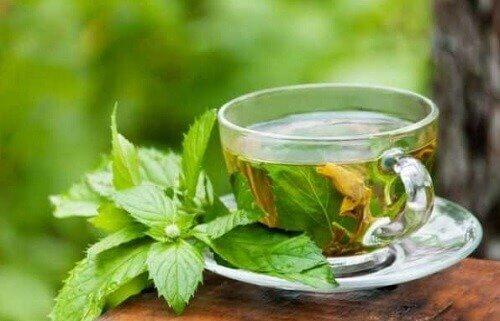 як приготувати омолоджувальні чаї