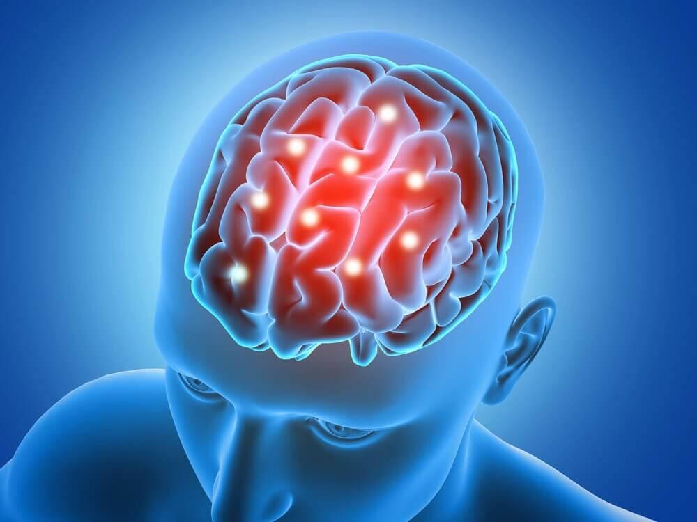 вплив спорту на мозок