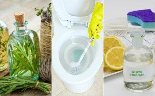 Натуральні дезінфекційні засоби для ванної кімнати