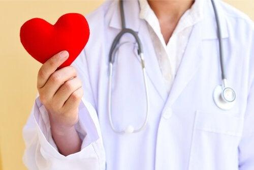 здорове серце при вживанні фізаліса