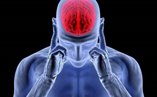 Виділення адреналіну: гормон збудження та стресу