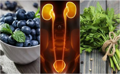Корисні продукти для захисту нирок та сечового міхура