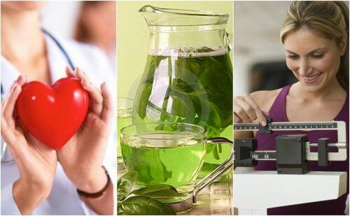 6 причин регулярно пити зелений чай