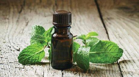 олія м'яти для лікування абсцесу