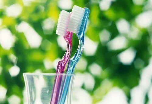 зубні щітки та мікроорганізми