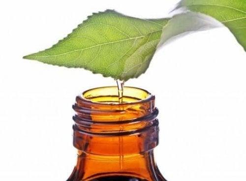 ефірна олія м'яти від закладення носа