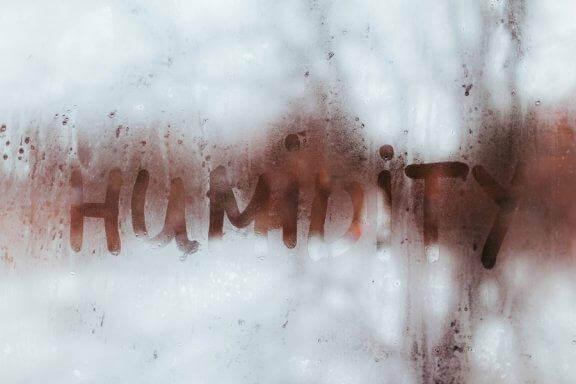 Як виявити надмірну вологу у вашому домі