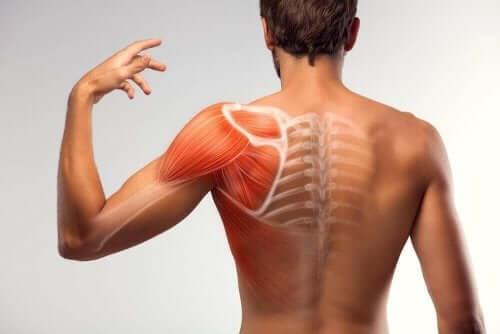 7 домашніх засобів для зменшення м'язових спазмів