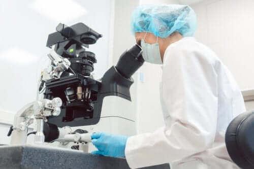 Доімплантаційна генетична діагностика