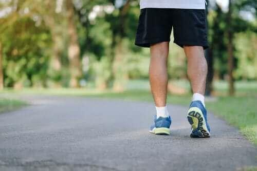 Чому прогулянки корисні: 8 причин