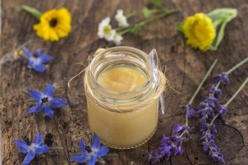 Маточне молочко: переваги та властивості