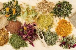 Лікарські трави для полегшення шлункового болю