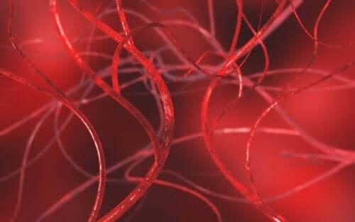 Розблокування артерій чотирма природними засобами