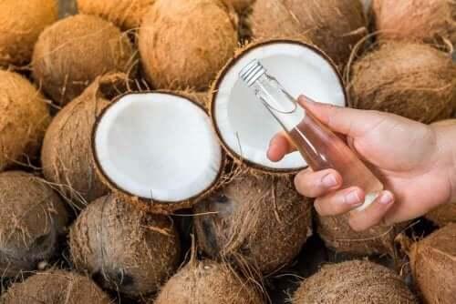 неймовірні переваги кокосів