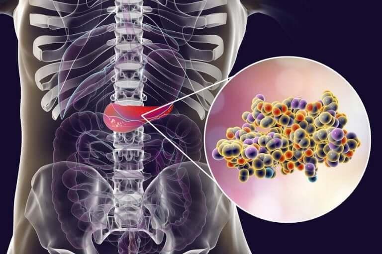 штучні підсолоджувачі викликають сплеск інсуліну
