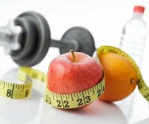 Які продукти найкраще їсти перед тренуванням?