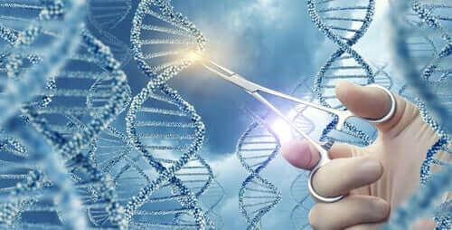 Що таке генетичні мутації?