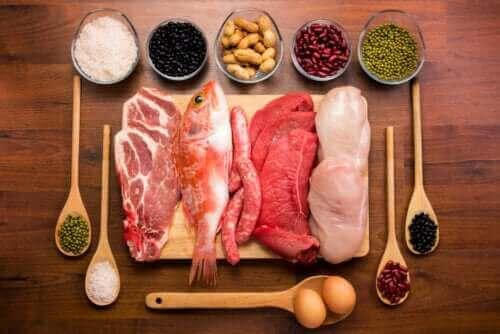 Яка роль білків в організмі