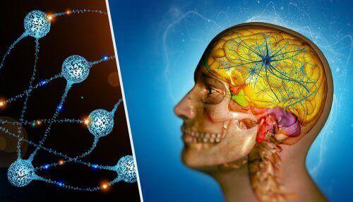 як утворюються метастази в мозку