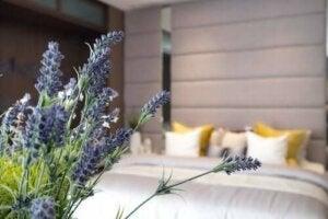 Гігієна сну: 10 секретів хорошого відпочинку